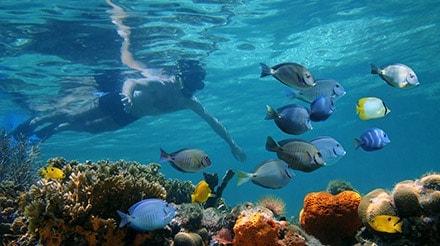 Natural Wonders - MSC Ocean Cay